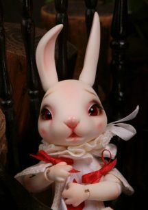 Kane-Rabbit