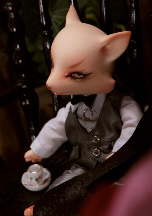 Figaro-Fox