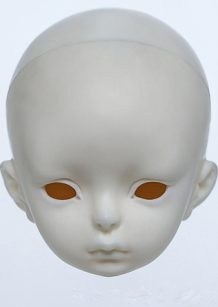 DOLLZONE Evan Head